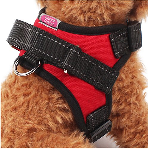 top dog harness - 9
