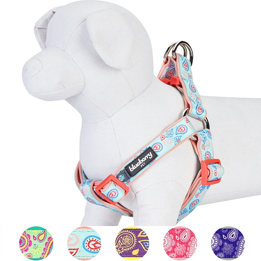 Blueberry Pet New 5 Colors Soft & Comfy Step-in Paisley Flower Print Dog Harness, Chest Girth 26'' - 39'', Pastel Blue, Large, Adjustable Harnesses for Dogs