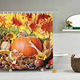 Pumpkin for Thanksgiving Day Shower Curtain, Festival Themed Decor- ZBLX Waterproof Polyester Fabric Shower Curtain for Your Bathroom (60' x 72' )