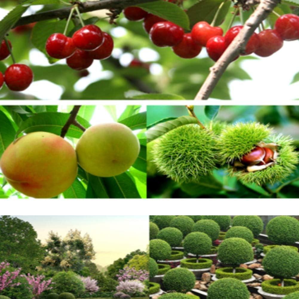 SUSHOP Bypass Loppers,Heavy Duty Branch Lopper,Garden Power Pruner,Efficient,Pruner Tree Trimmer
