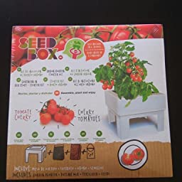 SeedBox SBCUOR-Oregano: Amazon.es: Jardín