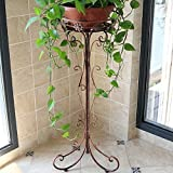 QFFL huajia Iron Flower Rack Single Green Lauro Flowers Floor pots Indoor and Outdoor European Living Room Balcony Folding Flower Shelf (3 Colors Optional) (Size Optional) (Color : C, Size : S)
