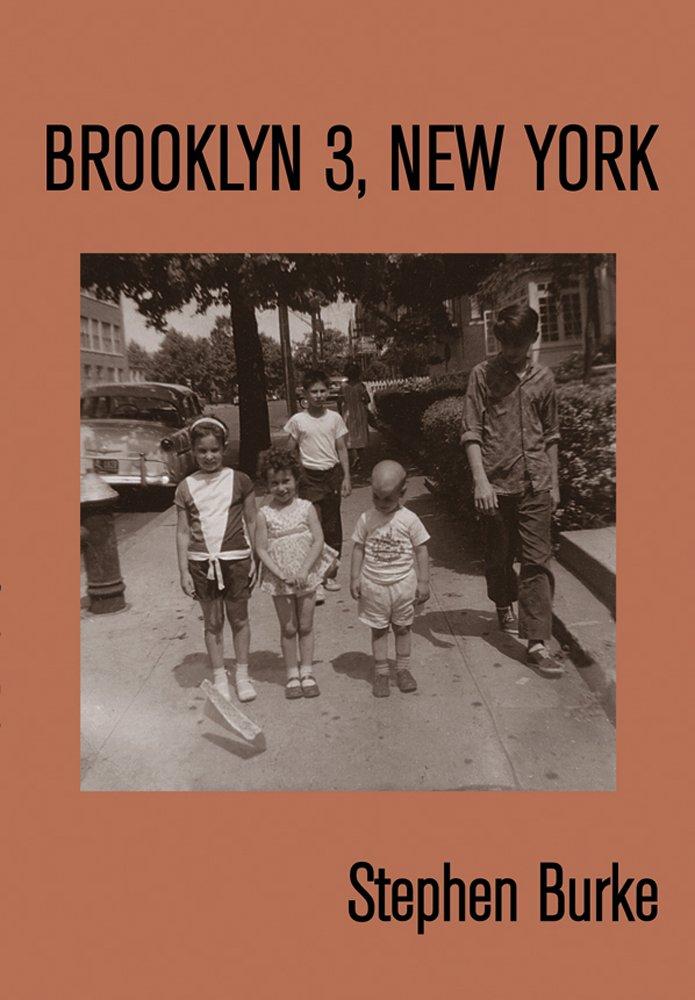Brooklyn 3, New York ebook