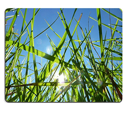 luxlady-natural-rubber-gaming-mousepads-grass-blades-against-a-blue-sky-image-id-25390287