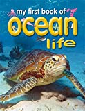 img - for My First Book of Ocean Life book / textbook / text book