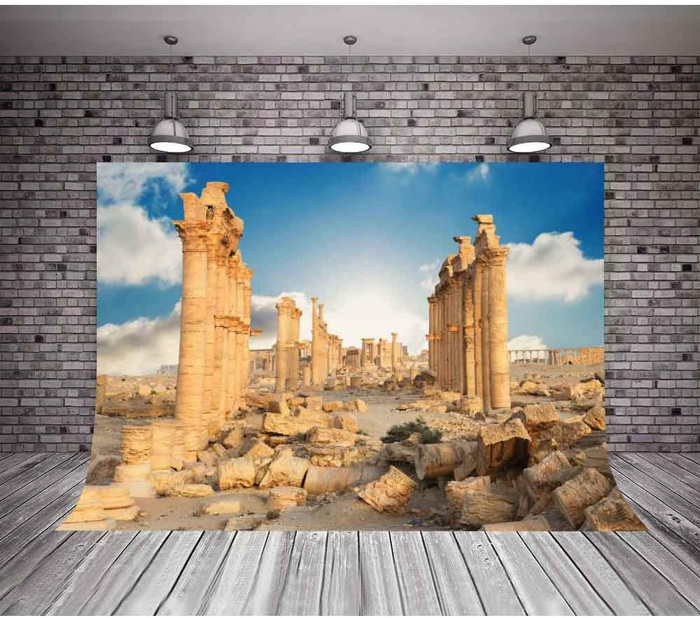 MTMETY 10x7ft Greek Temple Ruins Background YouTube Photo Studio Photo Booth Backdrop Props LSME907