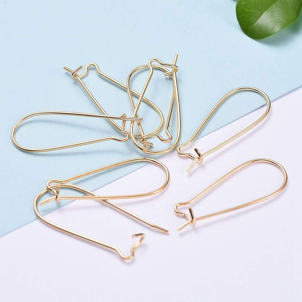 LiQunSweet 100 PCS Brass Silver Tone Earring Hooks with Bead Charms Jewellery Making DIY Earring Jewelry Findings 15mm