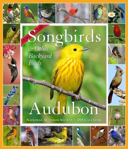 Audubon 365 Songbirds Calendar 2010 (Picture-A-Day Wall Calendars) ()
