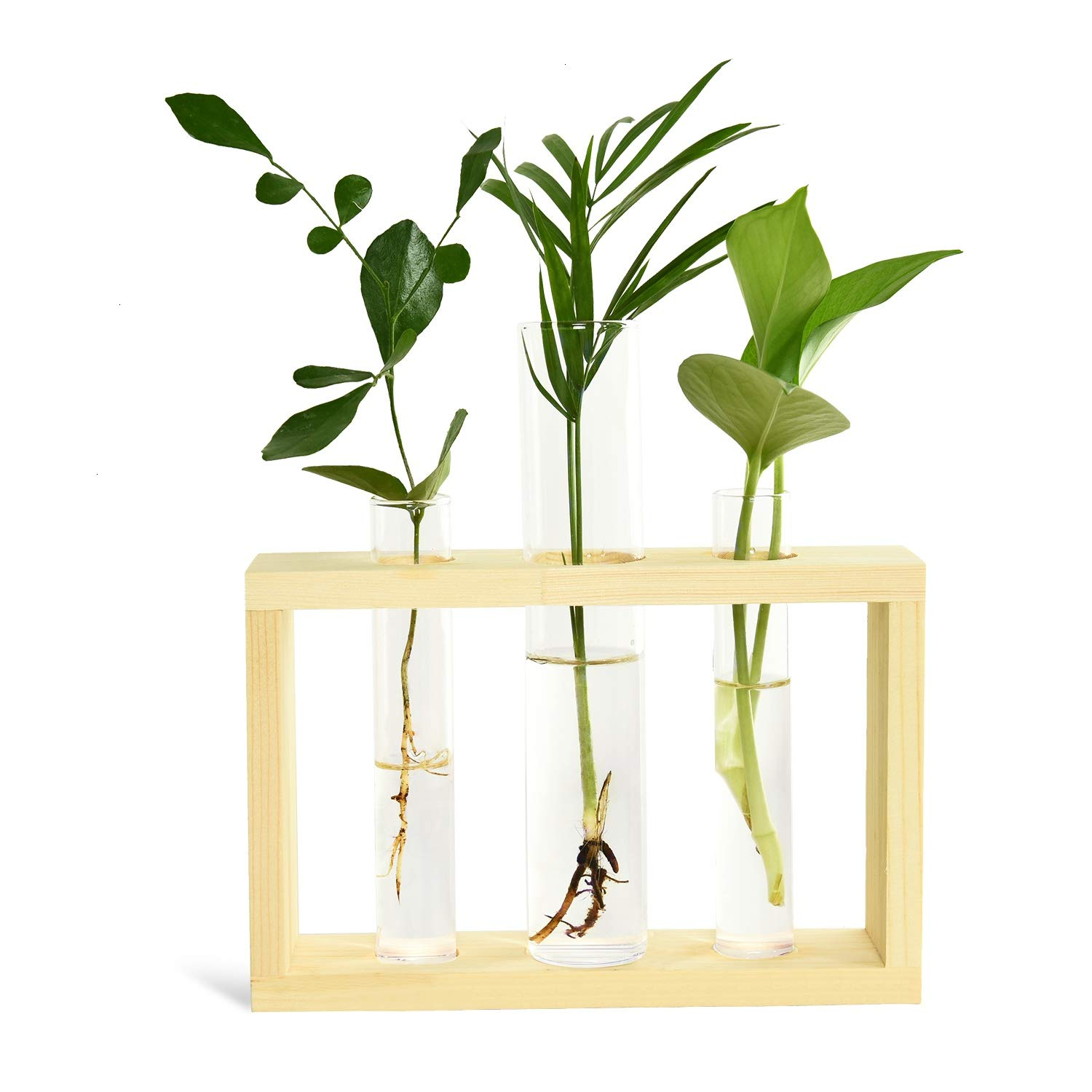 Vumdua Test Tube Planter Plant Propagation Station Glass Terrarium Test Tube with Wood Stand for Propagating Hydroponic Plants Home Office Decoration