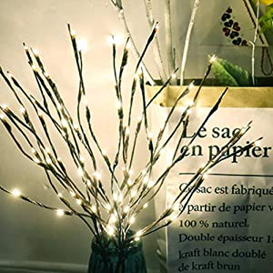 Winnes LED Lights Warm White Lighted Branches 60 LED Lights Artificial Tree Willow Branches Lamp for Home Holiday Party Decoration Decor Battery (5 PCS, White)