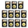 2006 - 2016 11-Coin 1 oz Gold Buffalo Set MS-70 NGC (Black Cores) MS-70