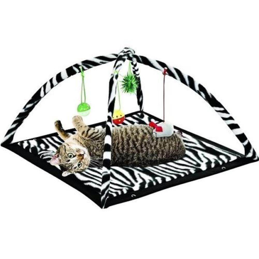Amazon.com: Zebra Print Cat Play Tent Dangle juguetes ...