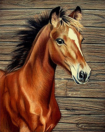 RunFar Horse Pattern DIY 5D Diamond Embroidery Painting Cross Stitch Craft Diamond Painting By Number Kits Home Decor Gift
