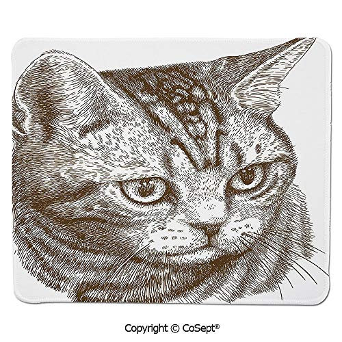 - Mouse Pad,Portrait of a Kitty Domestic Animal Hipster Best Company Fluffy Pet Graphic Art,for Laptop,Computer & PC (11.81
