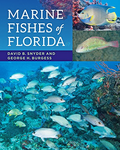 Florida Fish - Marine Fishes of Florida