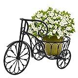 HomGarden Patio Mini Garden Nostalgic Bicycle Tricycle Planter Home Decor Iron Plant Stand - Flower Pot Cart Holder - Ideal for Home, Garden, Patio (Single Pot, Black)