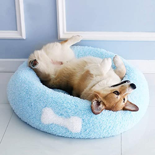 Affetto Cool Magic Queen Cushion Bed for Dog Cat Pet Summer Winter Cozy Comfortable Best Luxury