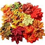 Gresorth-10-Color-Fake-Leaf-Artificial-Autumn-Fall-Maple-Leaves-Art-Flower-Wedding-Party-Decoration-500-PCS