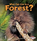 What Can Live in a Forest? (First Step Nonfiction (Paperback))