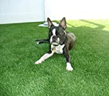 2' x 3' Premium Artificial Grass Indoor/Outdoor Synthetic Turf Rubber Backed With Drainage Holes, 4-Toned Blades