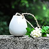 Celestte Hanging Planter, Decorative Ceramic Flower Pot Water Planter Plant Vase, Set of 2