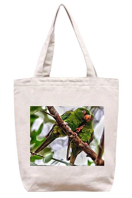 Loro de lona del algodón bolso de mano - amor: Amazon.es: Hogar