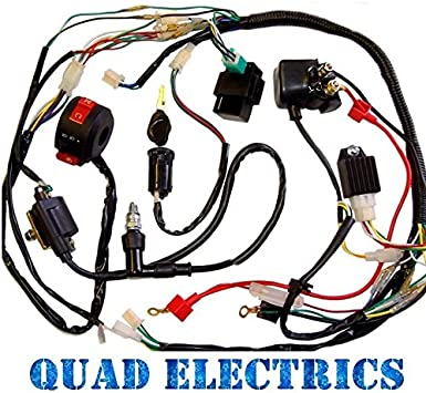 Full Electrics Wiring Harness Cdi Coil 110cc 125cc Atv Quad Bike Chinese Buggy Gokart Taotao Jetmoto Roketa Electrical Amazon Canada