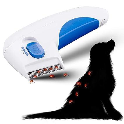Elektrischer Flohkamm Für Hunde Und Katzen Haustier Ungeziefer