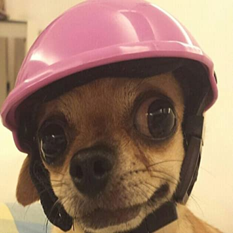 POPETPOP Dog Helmet Bike Motorcycle Helmets Sports Dog Costumes Accessories for Puppy Size s Pink