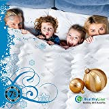 Magnetic Therapy Comforter|Down Alternative Duvet Insert|Far Infrared Natural Activated by 100% Premium Tourmaline Filled Cotton|Magnets Improve Blood Circulation and Flushing Out Body Toxins