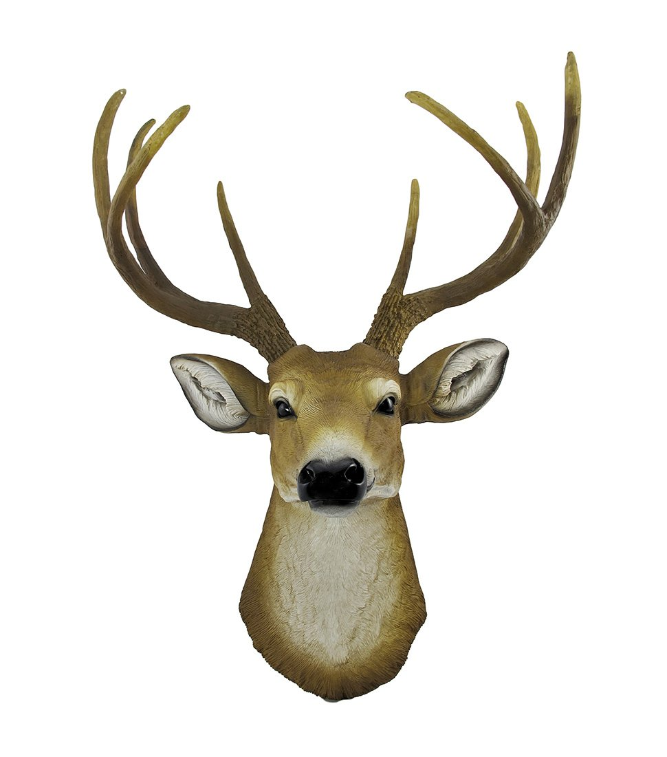 Amazon 8 point buck deer head bust wall hanging home kitchen amipublicfo Gallery