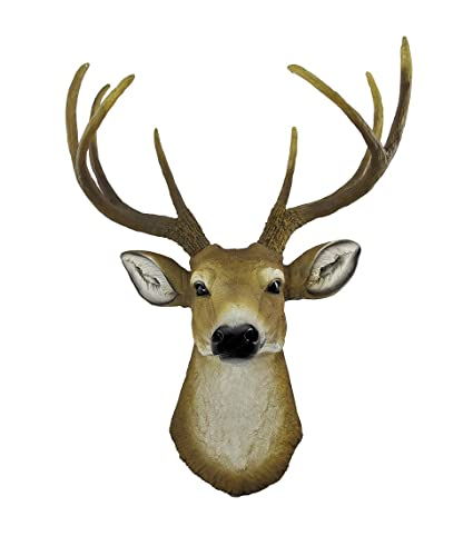 Amazon Com Private Label 8 Point Buck Deer Head Bust Wall Hanging