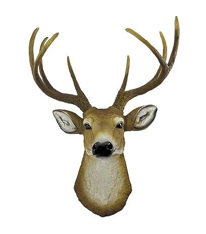 Amazon.com: 8 Point Buck Deer Head Bust Wall Hanging: Home & Kitchen