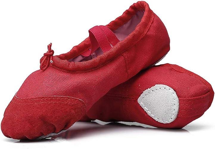 Amazon.com: Zapato de ballet profesional para niñas de MSMAX ...