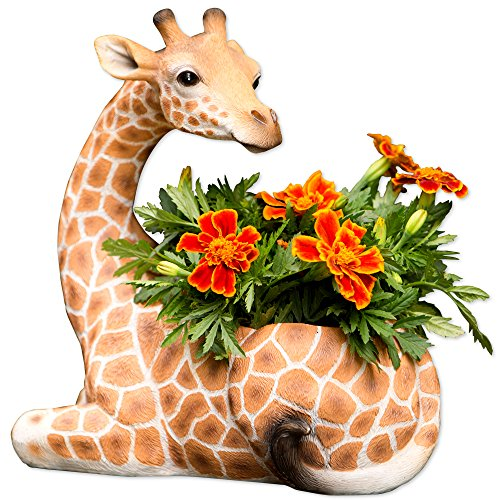 (Bits and Pieces - Indoor/Outdoor Giraffe Planter - Wildlife Animal Urn for Plants - Durable Polyresin Safari Inspired Décor)
