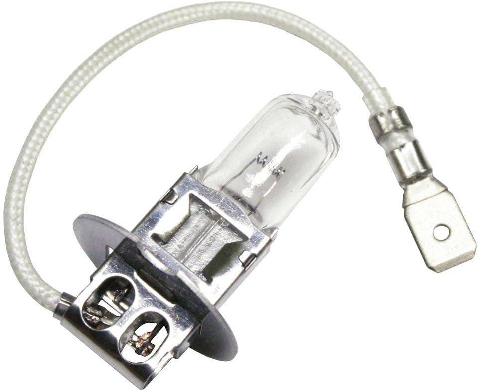H3 Halogen Bulbs 6V DC 35 Watt  ~ Set of 10
