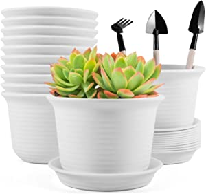 Baodan Plastic Flower Plant Pots, 6 inch Plant Containers with Drainage Holes and Trays, Decorative Round Seedling Nursery Planters for Indoor Outdoor, Set of 12- Plants Not Included (White)
