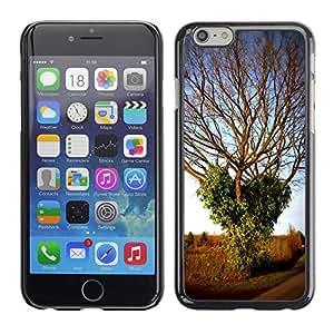 """Print Motif Coque de protection Case Cover // F00001761 invierno Efeu hiedra corazón Herz árbol // Apple iPhone 6 6S 6G 4.7"""""""