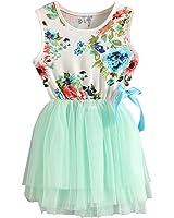 Theplus Little Girls Sleeveless Floral Princess Dress Tulle Tutu Sundress