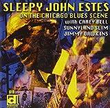 On the Chicago Blues Scene (Electric Sleep)