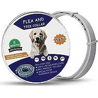 Lopp- och fästinghalsband för hundar, vattentät, anti-lopphalsband justerbar naturlig och säker, 8 månaders skydd…