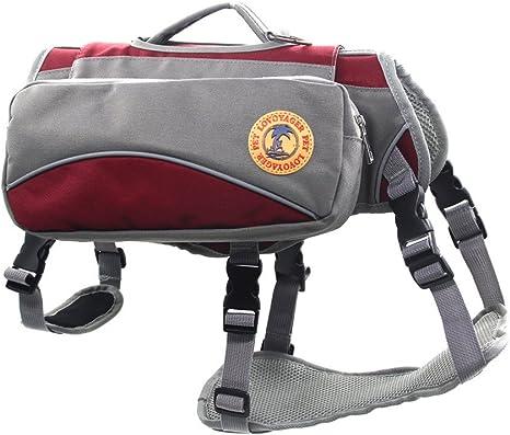 petacc Arnés y mochila para animales, uso exterior: Amazon.es ...