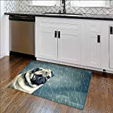 Foldable Thicken Rug Sad Dog Maximum Absorbent Soft W35'' x H23''
