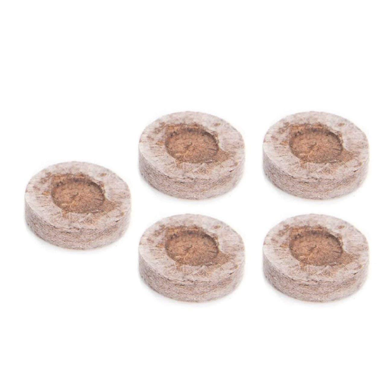 Ballylelly 5pcs 30mm Peat Pellets de Semillas de Partida Tapones de paletas de siembra de plántulas Bloque de Suelo: Amazon.es: Jardín