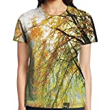 WuLion Autumn View in A Forest with Faded - Best Reviews Guide