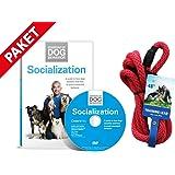 Cesar Millan Illusion Collar Collier et laisse pour chien en coton tressé Rouge avec Social ization DVD socialisation bases de l'éducation pour Chien Essentials of Dog Behavior Cesar Millan