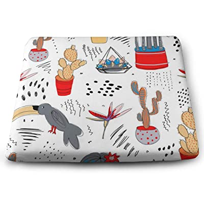 """Osvbs Cactuses Decorative Seat Cushions 1.2"""" × 13.8"""" × 15.0"""" for Home Office Dinning Chair Solid Color Indoor Outdoor: Home & Kitchen"""