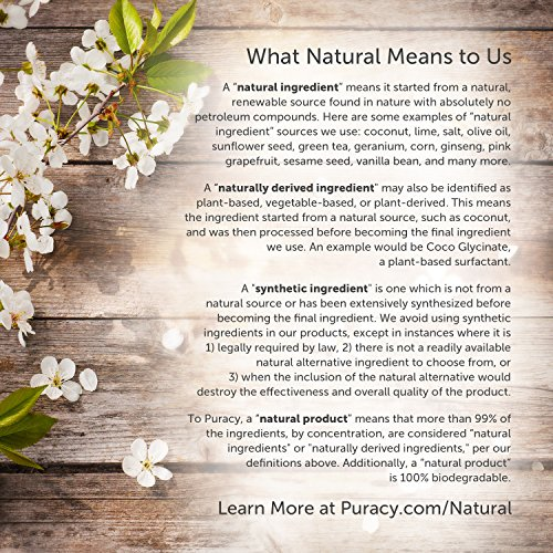 Puracy Natural Body Wash, Sulfate-Free Bath and Shower Gel, Citrus & Sea Salt, 16 Ounce (2-Pack)