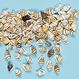 Mini Conchiglie Fai Da Te per Bambini da Infilare per Creare Braccialetti o Altri Gioielli (confezione da 200)