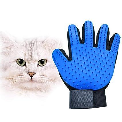 Guante de aseo para mascotas: herramienta de aseo + manopla ...